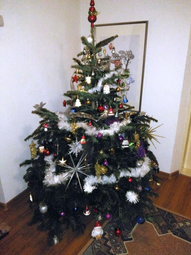 My favorite Christmas memory it is related to tree decoration.It was exciting when the whole family gathers together …