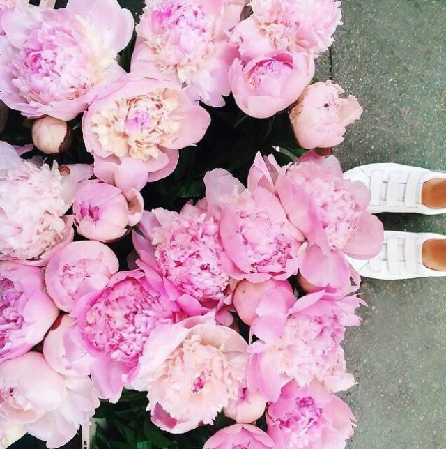 When in doubt, add peonies.