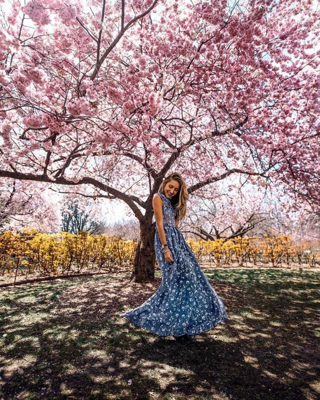 Nothing makes a more fun or classy outfit for spring than a floral dress, it always trendy and look so cute