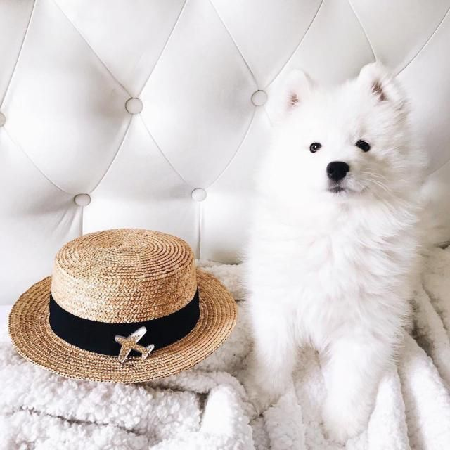 Cute Beach Hat