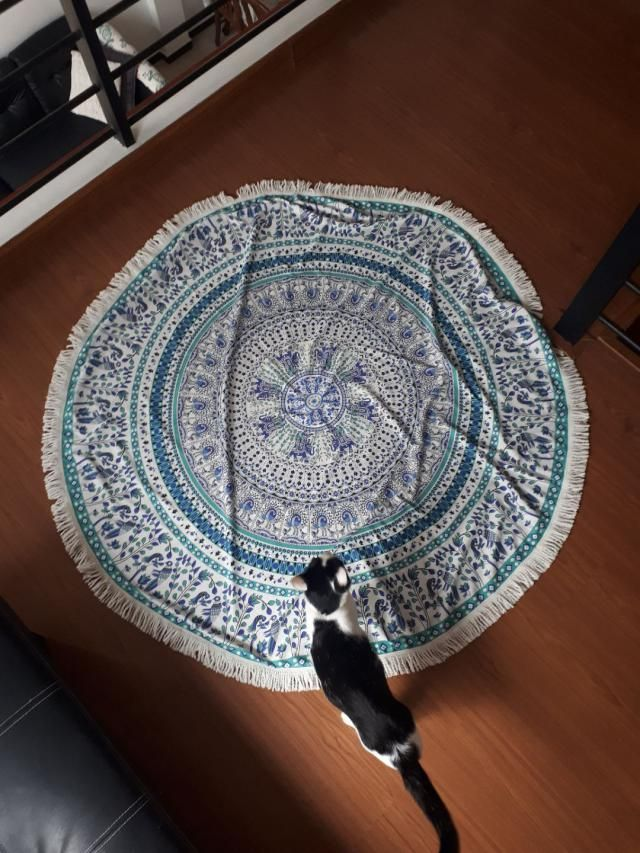 Super cute.  Looks exaclty like the pictures. I use it as a rug and love it! Pretty big size as well.