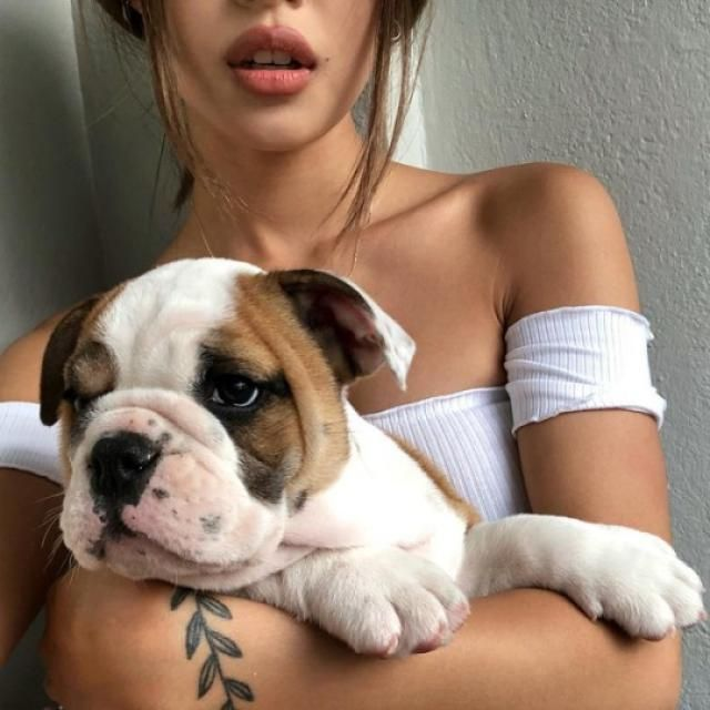 This pic have 2 beautiful things! the puppy and the top! and you can get the croptop here in ZAFUL!♥