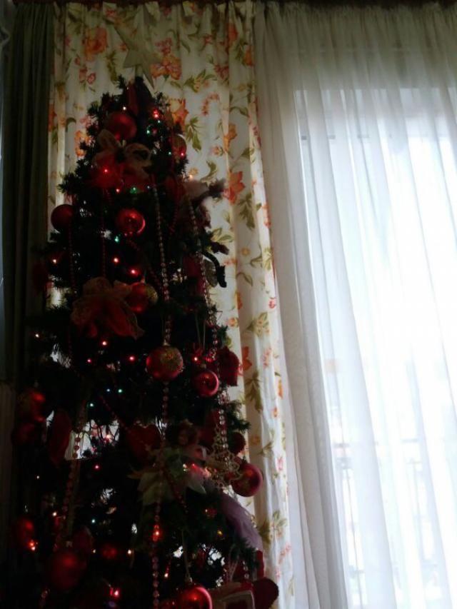 Underneath the Christmas tree. :)