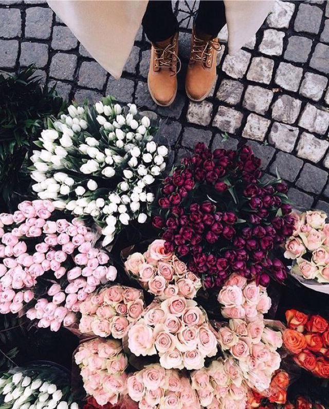 J&;aime le printemps parce que les fleurs sont en fleurs, grâce à des douches de printemps, nous obtenons de belles fl…