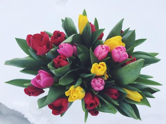 I love flowers without a reason ❤