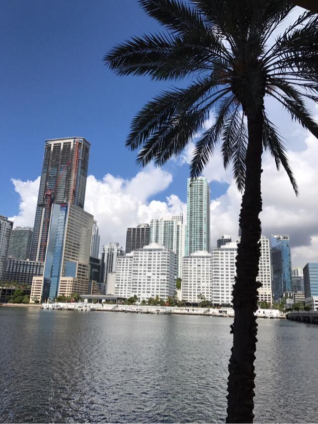 Beautiful view of Miami
