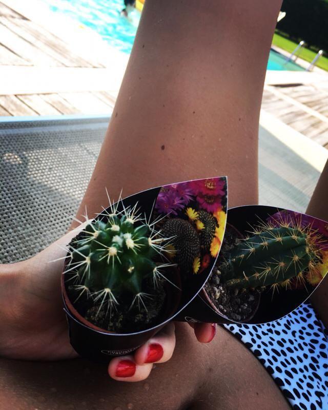 I love plants and bikinis what can i say!?