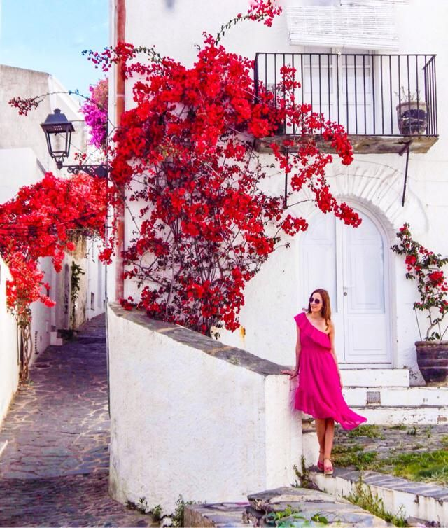 I really love bougainvilleas ❤️ Costa Brava, Spain
