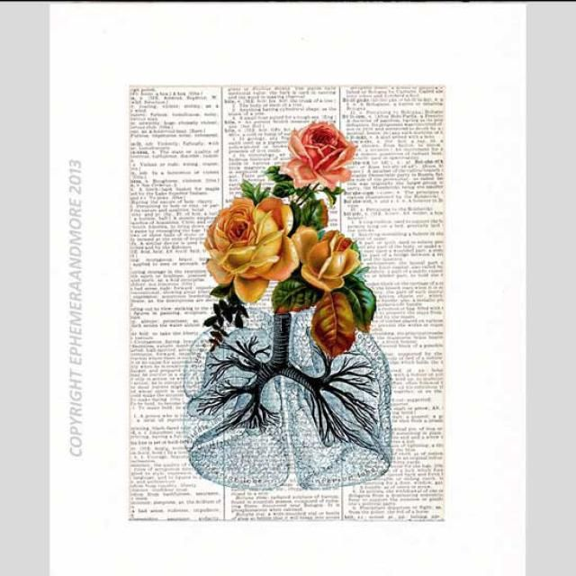 2019 Best Lungs Medical Illustration Images And Outfits | Z