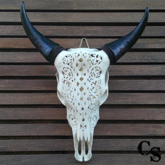 2019 Best Cow Skull Wall Art Images And Outfits Z Me Zaful