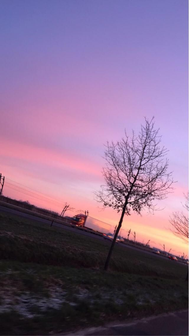 I took this picture on my way to school. The whole sky was purple with a bit of orange and pink. I think it's absolut…