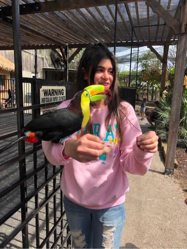 I got to hold a toucan :)