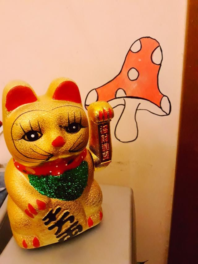 maybe my lucky cat will help me to get this coupon