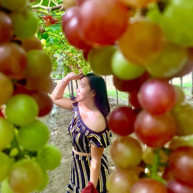 Lost girl in the grape farm.