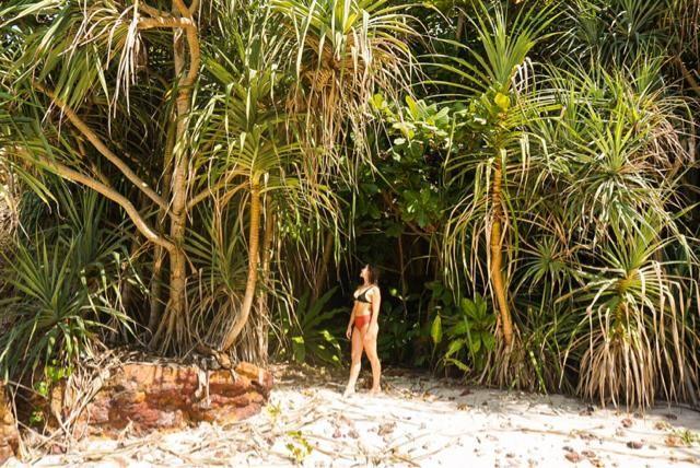 Jungle life with my Zaful bikini