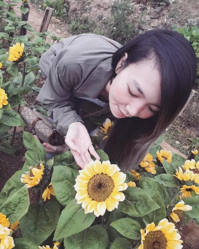 Hello Sun-shine 🌻