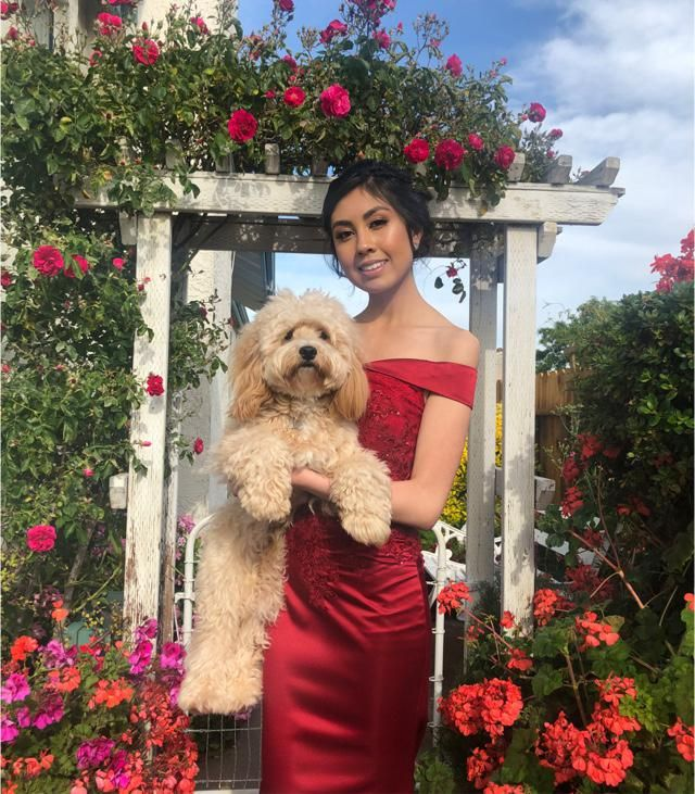 Prom pics with Nugget ❤️