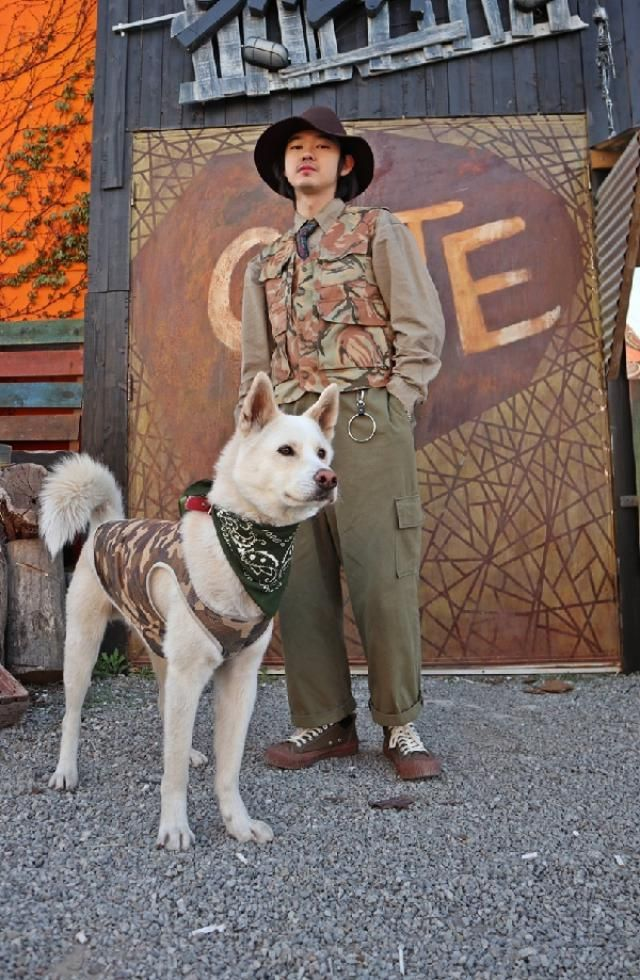 Korea wolf dog(Jindo) with camoflage couple look   insta: bb_stg